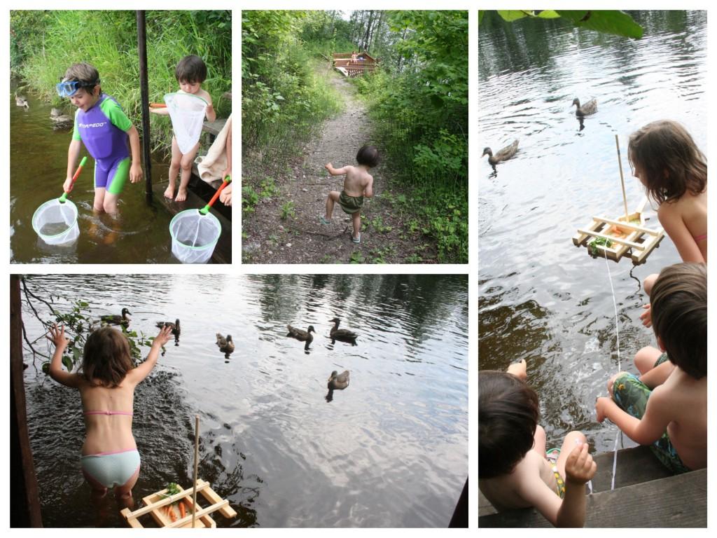eau-canards-2015